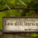 Education Michelangelo quote flickr Anne Davis